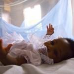 baby_MalariaNet