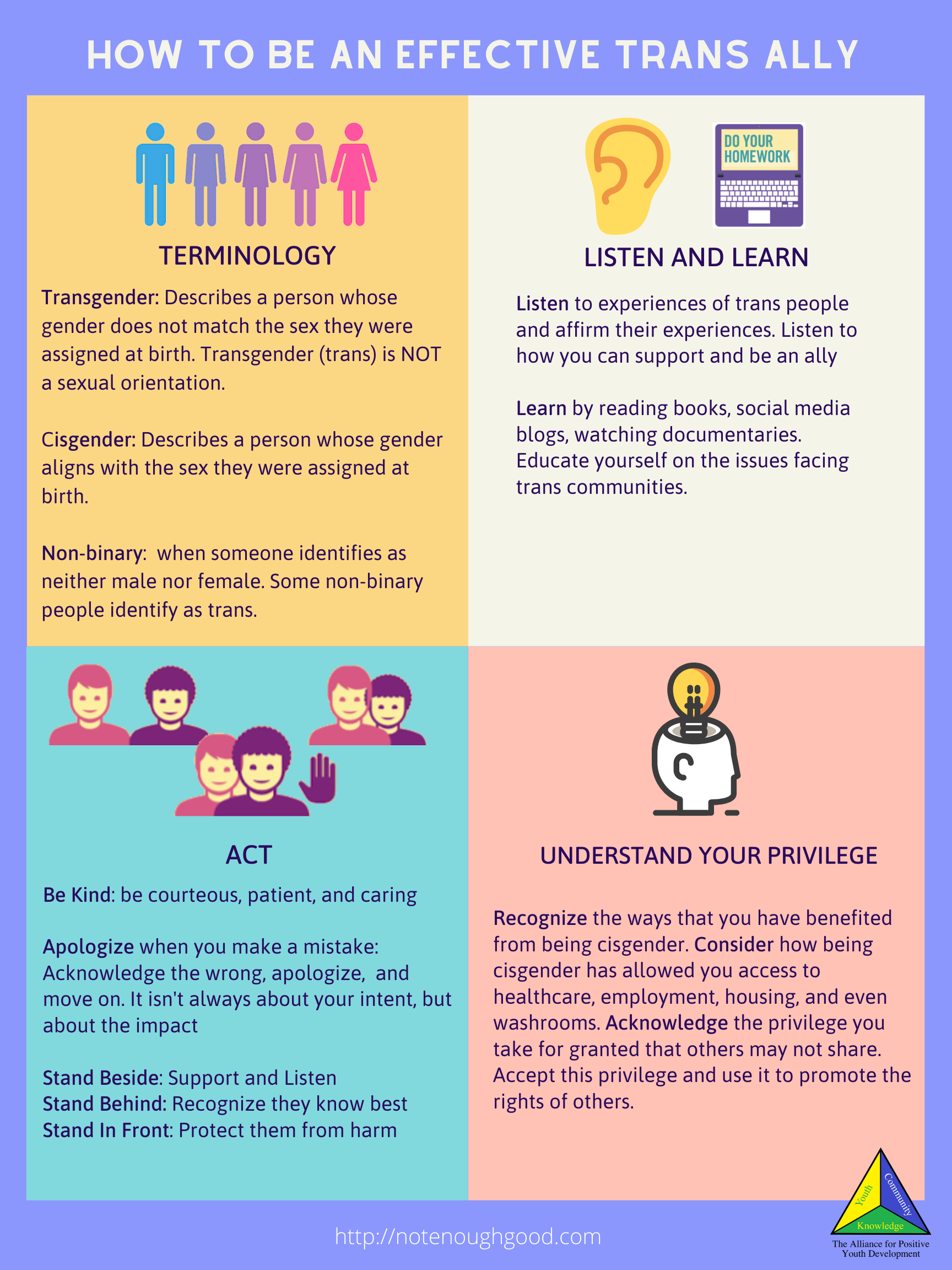 infographic on how to be an effective trans ally