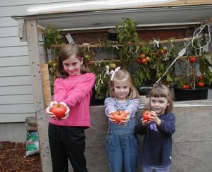 girls planting tomatos